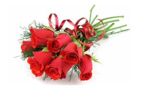 玫瑰花语大全不同朵玫瑰代表不同含义,你懂了吗?
