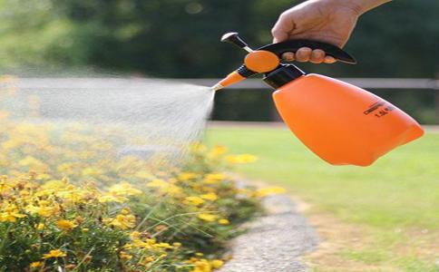 冬天花卉要怎么浇水?